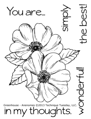 Technique-Tuesday-Greenhouse-02-13-Anenomes-Clear-Stamps-Large