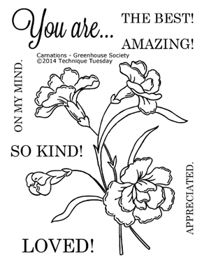 Technique-Tuesday-Greenhouse-04-14-Carnations-Clear-Stamps-Medium
