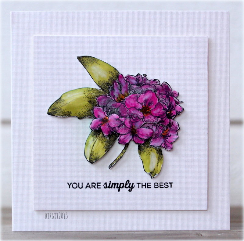 Simply the Best card by Birgit Edblom. Created with the Rhododendron - Greenhouse Society.