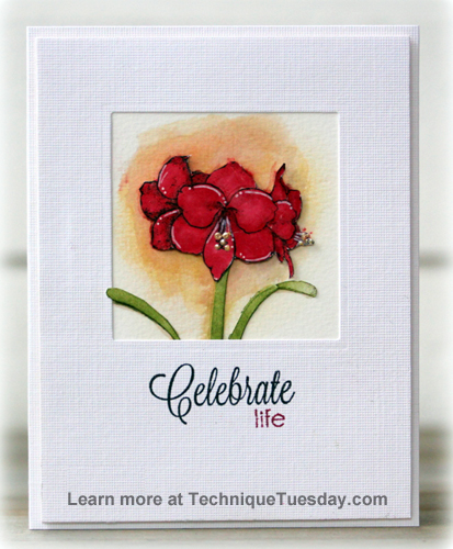 Celebrate Amaryllis by Birgit Edblom for TechniqueTuesday.com